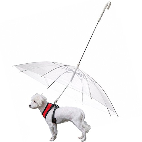 Parapluie OMEM pour chien avec laisse extérieure imperméable, diamètre 77 cm
