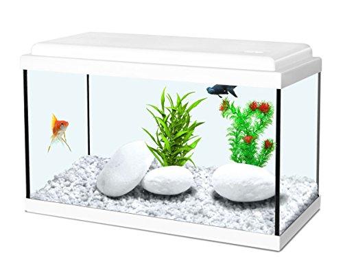 Aquarium blanc pour enfants