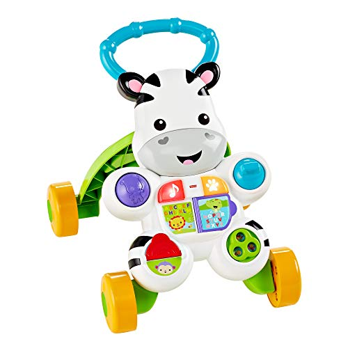 Fisher-Price Infant - Talking Zebra, First Steps (Mattel DLD96) (version française)