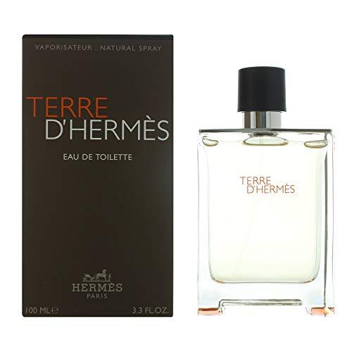 Hermes Terre D'Hermes Eau de Toilette Steamer 100 ml