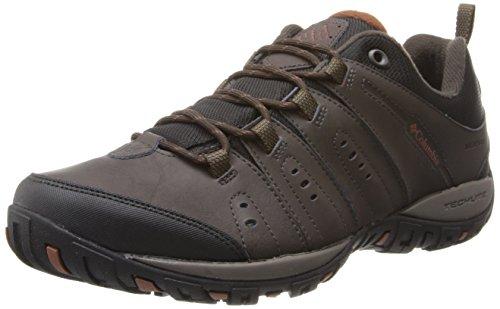Columbia Woodburn II, Bottes de randonnée pour hommes, marron (Cordovan, Cannelle 231), 43 USA