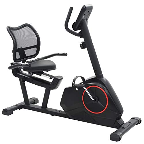 Bicyclette d'exercice lifeXL Bicyclette stationnaire inclinable Masse inclinable rotative 10 kg Exercice de remise en forme