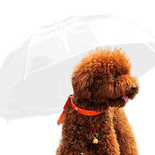 Cosanter 1x Parapluie transparent pour chien Cosanter 1x Parapluie imperméable avec fermeture éclair parapluie imperméable parapluie Corde de traction pour chiens de petite taille
