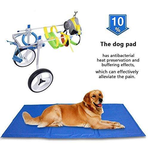Fauteuil roulant SehrGo ajustable pour chien, hauteur de hanche 7'-20', poids 8 à 55 lbs, rééducation des membres postérieurs, chariot à 2 roues pour chien (M)