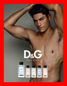 Le Bateleur Dolce & Gabbana: ¿A qué huele?